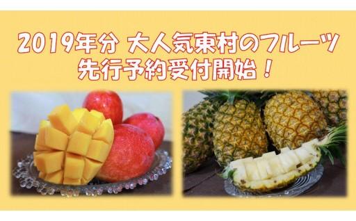 沖縄県東村のパインアップル&マンゴー特集!