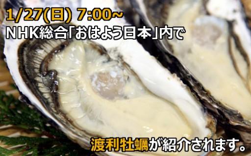 幻の渡利牡蠣の生産現場が全国放送で放映されます!