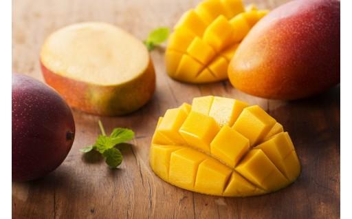 宮崎の味!完熟マンゴー『果実の宝石』