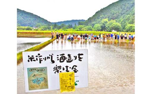 無農薬で米作りから酒造りを楽しむ会 参加受付中!