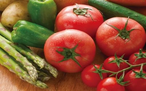 【受付再開!】新潟県新発田市産季節の野菜セット