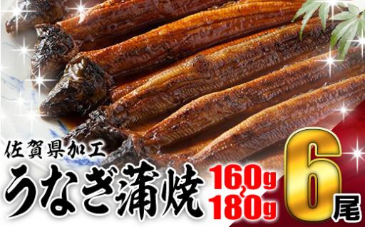 佐賀県加工 鰻の蒲焼き(160〜180g)6尾!