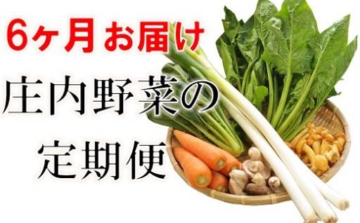庄内野菜の6ヶ月定期便!