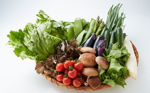 【5ヵ月間】定期便 季節の野菜セット