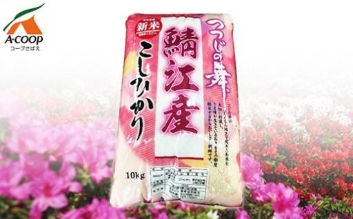 福井県鯖江産『つつじの舞 コシヒカリ10kg』
