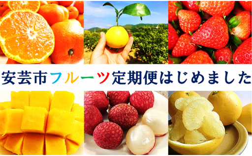 高知県安芸市フルーツ定期便【6.2万円コース】