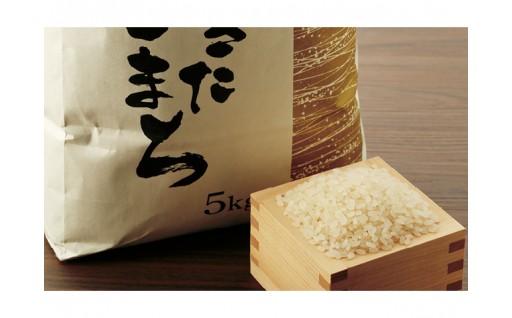 秋田市雄和産あきたこまち無洗米1年分