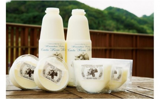 牛乳!チーズ!アイスクリーム!乳製品特集