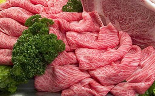 ◆絶品!ブランド牛!【とちぎ和牛・前日光和牛】