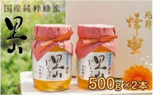 国産里山蜂蜜500g×2本★養蜂60年自慢の一品