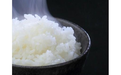 『お米の定期便』申込受付中!
