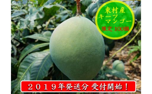 2019年発送 東村産グリーンダイア