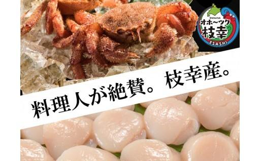 最高の海産物は【オホーツク枝幸産】をチョイス!