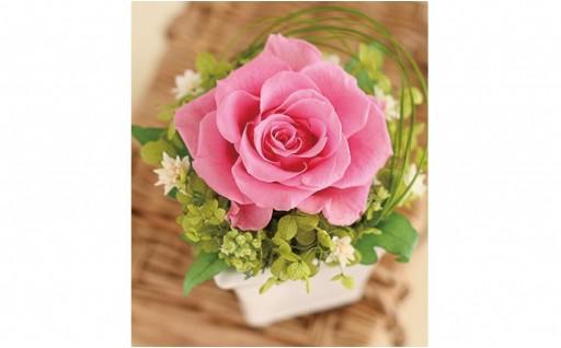 9種類から選べる!母の日に薔薇を送りませんか?