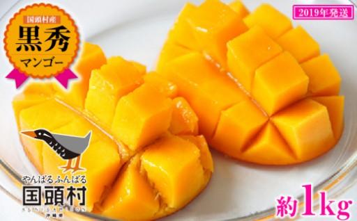 国頭村産マンゴー黒秀 2玉~3玉入り(約1Kg)