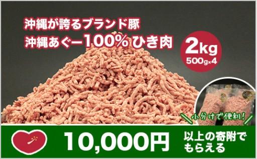 あぐー豚100%のひき肉がついに登場!
