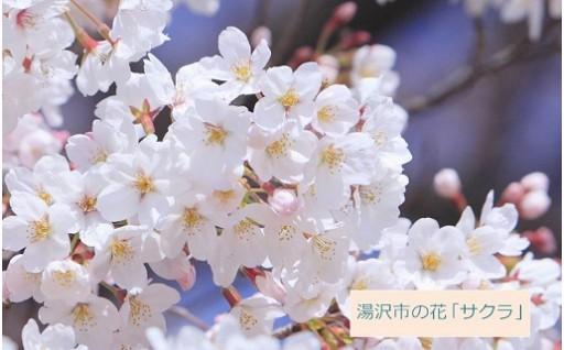 新元号発表 湯沢市も発表の瞬間をお祝いします!
