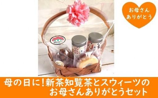 知覧茶新茶祭りと母の日キャンペーン同時開催中!