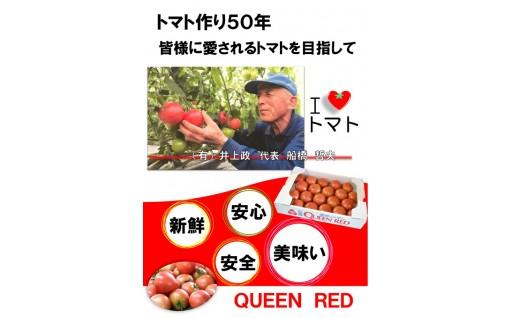水耕栽培トマト定期便の予約受付を開始しました