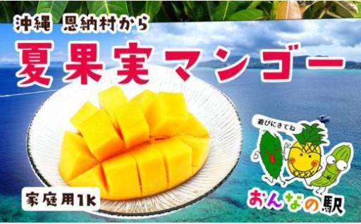 恩納産 家庭用完熟マンゴー 約1kg(2〜3玉)