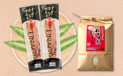 四万十うなぎ蒲焼き2本+仁井田米2kgセット