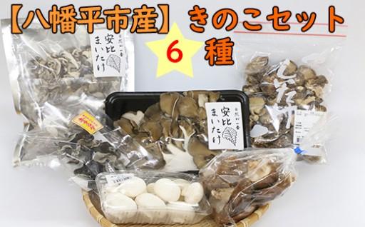 八幡平市のきのこがたっぷり入っています~!!