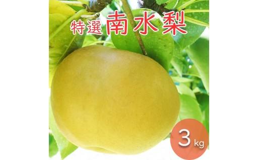 【信州いいじま】プレミアム南水 3kg