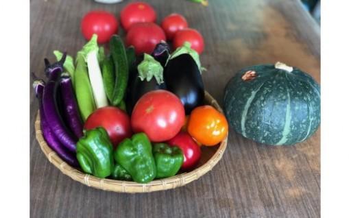 夏野菜、受付中です!