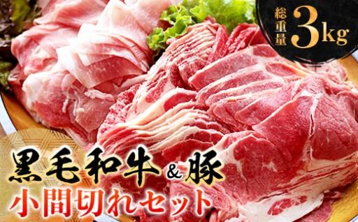 お腹い~っぱいお肉を食べよっ♪