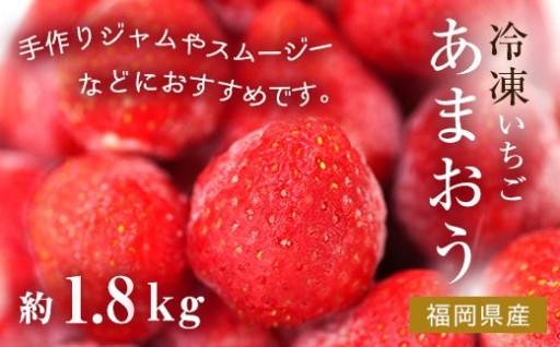 冷凍いちご(あまおう)約1.8kg