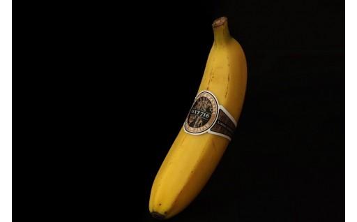 【宮崎県川南町】国産バナナ『NEXT716』