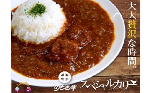 大人贅沢のざき牛カリー10食寄附額12,000円