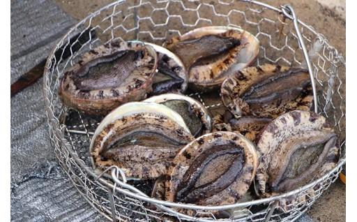 5月から漁が解禁!千葉県南房総市のあわび特集