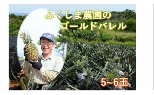 ふくしま農園のゴールドバレル(5~6玉)9kg