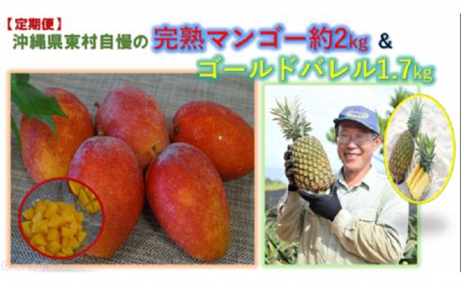 【定期便】超目玉!完熟マンゴー&ゴールドバレル