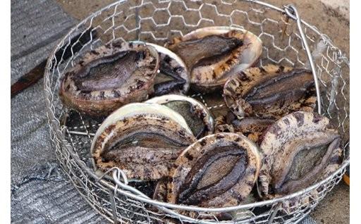 5月からあわび漁が解禁!千葉県南房総市あわび特集