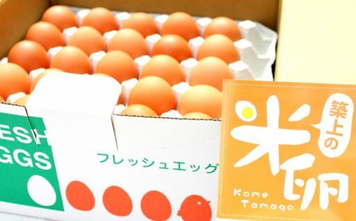 地元のお米を食べて育つ鶏の卵を養鶏場から直送!