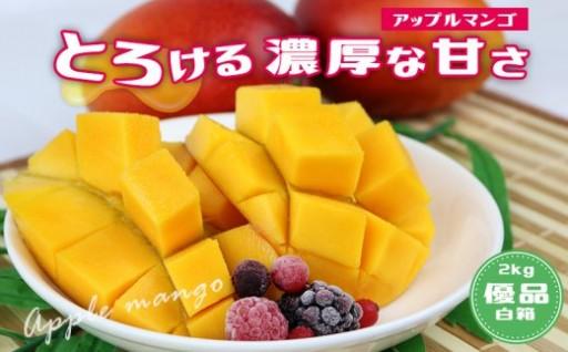 北中城村産マンゴー(約2kg)【白箱・優品】