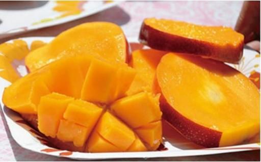 【限定150セット】糖度15%以上のマンゴー!!
