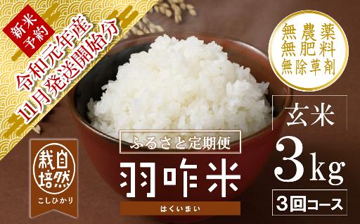 【新米受付】令和元年産・自然栽培米の定期便です!