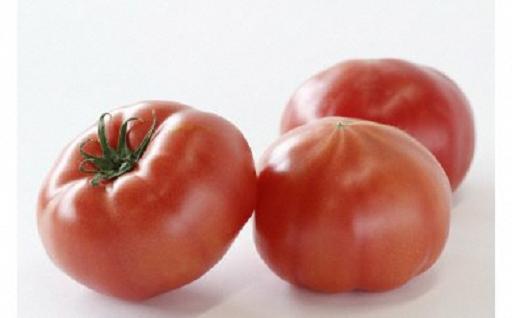 【クレカ限定】無加温・長期熟成こだわりトマト