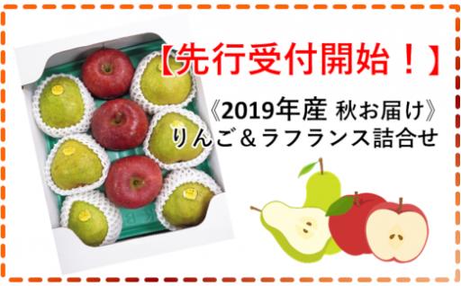 【ラフランス&リンゴ】旬のくだもの2色の詰合せ