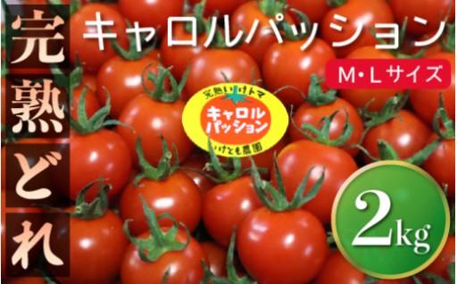門川町産の完熟ミニトマト