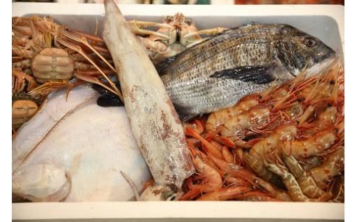 季節の魚、詰め合わせ!