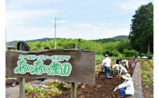 自然と触れ合う農村体験!オーナー利用券1区画分