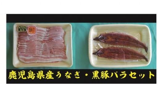 『鹿児島県産うなぎ2尾・黒豚バラ肉セット』