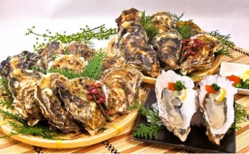 美味しい牡蠣が1年中食べられるのは厚岸だけ!