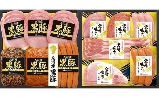 【南日本ハム㈱】宮崎味わいと九州産黒豚のセット