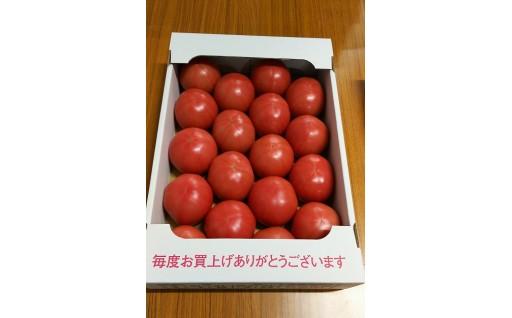 京トマト 約4キロ 申込は6/15までです!!