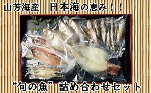 日本海の恵み★おいし~い干物!贈り物にも◎